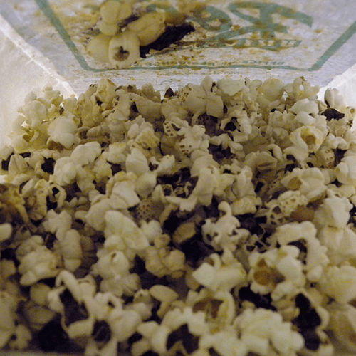 How to Get Rid of Burnt Popcorn Smell – How to Get Rid of Stuff
