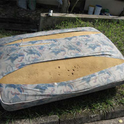 how to clean an old mattress